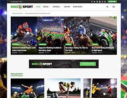 Bingo Sport Demo