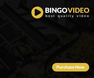 Bingo Video